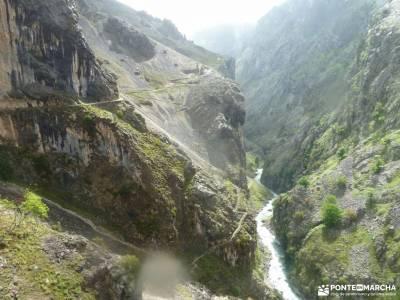 Ruta Cares-Picos de Europa; desfiladero rio puron sierra de montsant parque natural o invernadeiro l